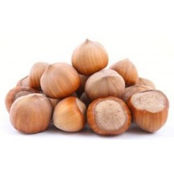 750gr. Hazelnuts in Shell