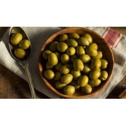 Olives en Salmorra, 1 Kg.