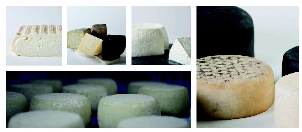 Spanish Artisanal Cheese